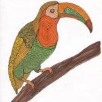 dessin d'un toucan au marker