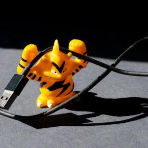 pokemon elektek avec un câble de recharge